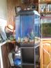 Шестигранный аквариум акваэль- с тумбой, свет, рыб