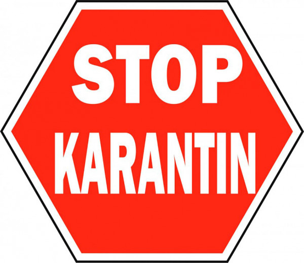Карантин до 12 апреля