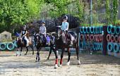 Соревнования по паралимпискому и специальному конному спорту