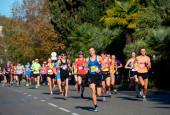 «Сочи марафон»