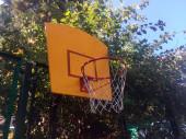 Спортивные площадки в Сочи